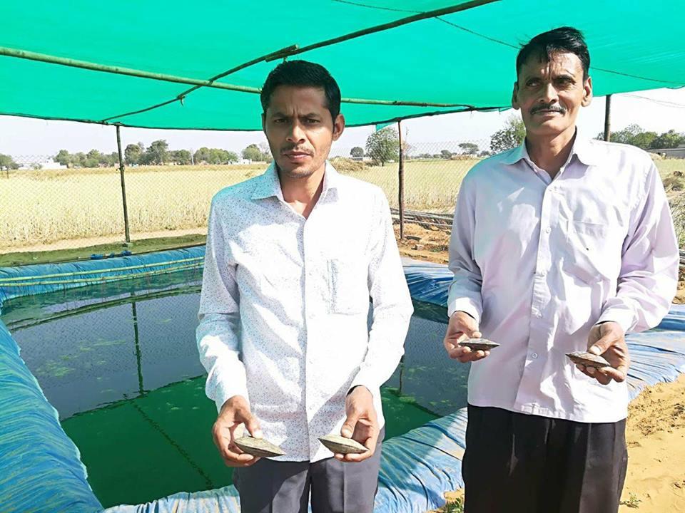 विनोद कुमार ने इंजीनियरिंग छोड़ की मोती की खेती